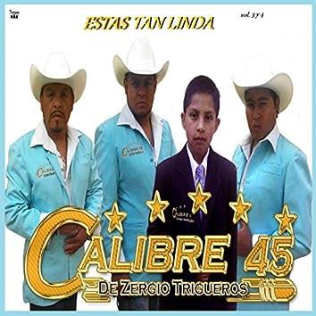 Estas Tan Linda Vol. 3 y 4