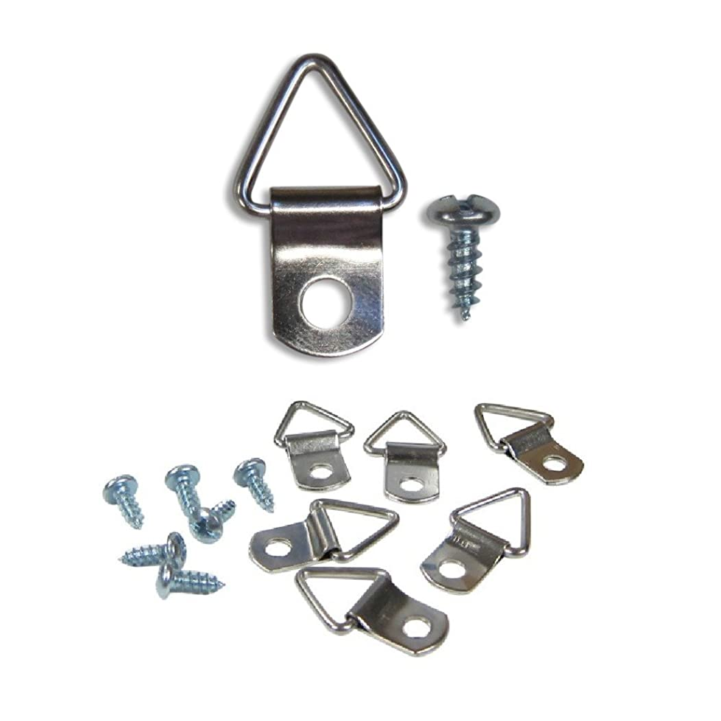 Frame Triangle Ring Hanger - Small D-Ring Picture Hanger with Screws - 100 Pack - Picture Hang Solutions