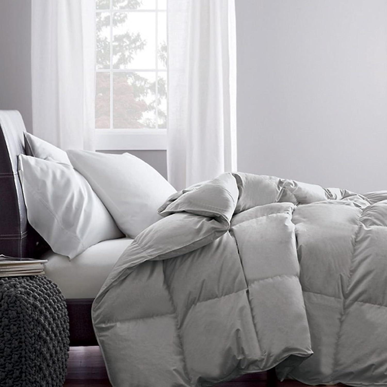 Dreamz Parure de lit Super Doux 650Fils 100% Coton 1Housse de Couette (100g m2 Fibre Fill) Single Long, gris Argent Massif Coton égypcravaten 650tc Doudou