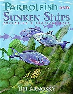 Best exploring sunken ships Reviews