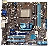 Asus Essentio CM1630 AMD Desktop Motherboard AM3, 61-MIBBJ5-01