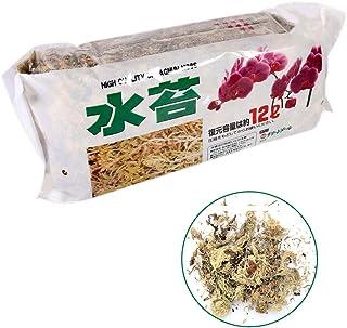 12L Sphagnum Moss Nutrición Hidratante Orgánico