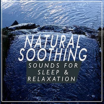 Natural Soothing Sounds for Sleep and Relaxation