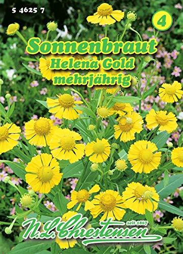 Helenium autumnale, Sonnenbraut, Helena Gold gelb N.L.Chrestensen Samen