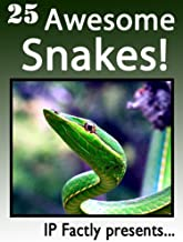 25 Awesome Snakes! Incredible Facts, Photos and Video Links to Some of the Most Incredible Animals on Earth (25 Amazing An...