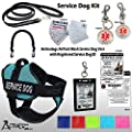 Activedogs Service Dog Kit - S Aqua Mesh Service Dog Vest Harness + Free Registered Service Dog ID + Clip-on Bridge Handle + ADA/Federal Law Cards + Travel Tag