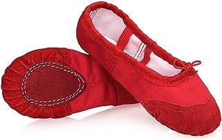 1b5d45d6f3 DoGeek Ballet Shoes Ballet Flats Women Ballet Pumps Slippers Pilates Shoes  Yoga Shoes Dance Shoe Gymnastics