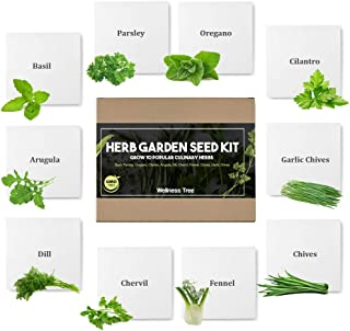 Herb Garden Seeds Kit for Planting | Non GMO | Culinary 10 Herb Seed Packets for Gardening Basil Cilantro Chives Indoor He...