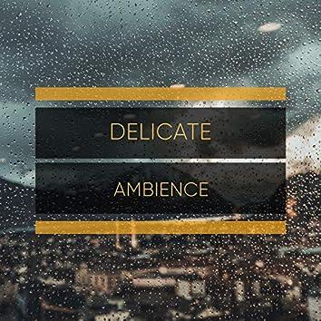 # 1 Album: Delicate Ambience