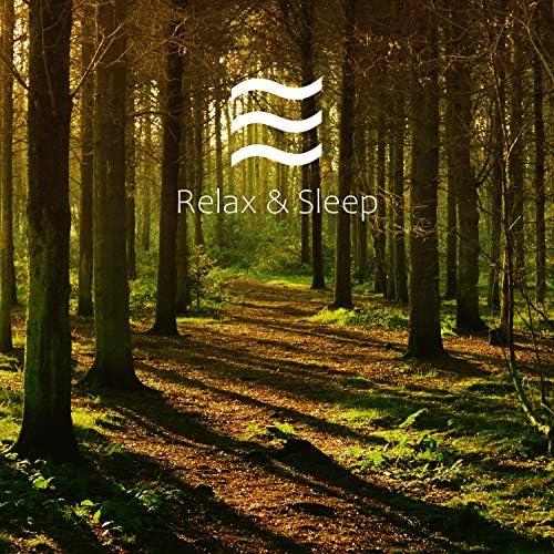 Smooth Raining Sounds for Better Sleep