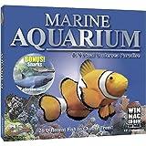 Encore Marine Aquarium + Sharks