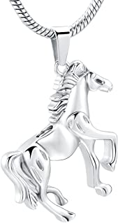 Horse Cremation Jewelry for Ashes Pet Urn Necklace Pandants for Ashes Keepsake Memorial Jewelry for Ashes