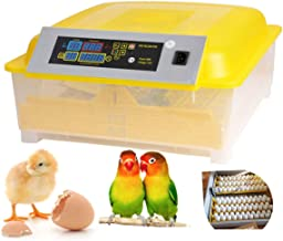 Aceshin Automatic 48 Digital Egg Incubator Turning Temperature Control, Poultry Hatcher for Chickens Ducks Goose Birds (US Stock)