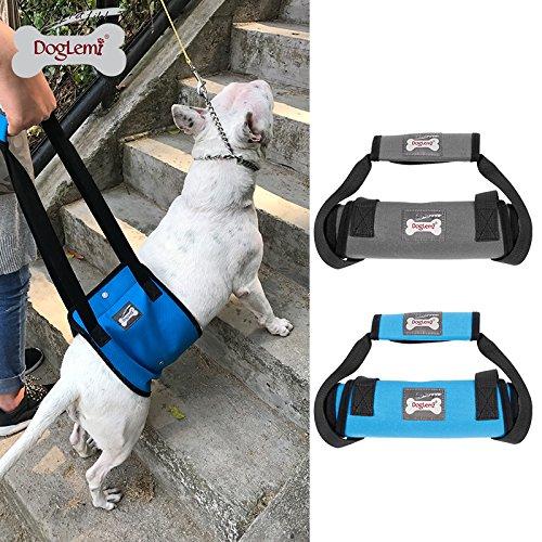 Arnés de apoyo para perros con soporte de elevación para ...