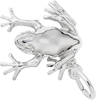 Rembrandt Tree Frog Charm