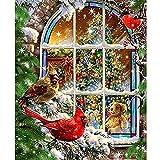DIY 5D diamond painting kit completo Pájaro de regalo de Navidad Bricolaje Diamante Pintura por Numero kit para Ninos Rhinestone Bordado Punto de Cruz Diamante Arts Craft Pared Decoración,50X60cm