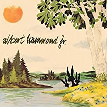 Albert Hammond Jr.: Yours To Keep Vinyl LP (Record Store Day)