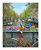 Pintoo - H1438 - at Amsterdam, Netherlands - 500 Piece Plastic Puzzle