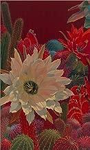 Stella's Garden by Sharon Weiser Laminated Art Print, 14 x 24 inches
