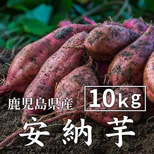 安納芋 10kg 土付き 生芋 (M〜2Lサイズ混合) 鹿児島県産 さつまいも あんのういも