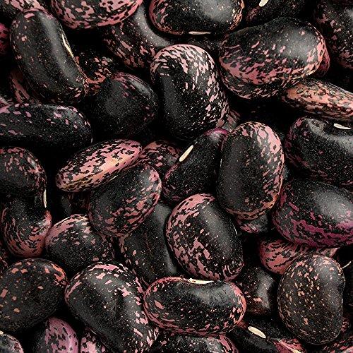 紫花豆 - 北海道産 国産 (1kg)