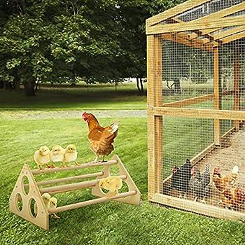 Bfttlity Perchoir en bois robuste fait à la main pour poules, perroquets et poules (style grotte)