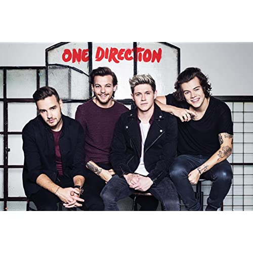 one direction posters  amazon com