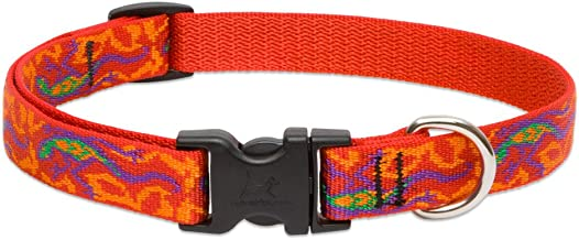 Lupine 3/4 Inch Go Go Gecko Adjustable Dog Collar for Small to Large Dogs
