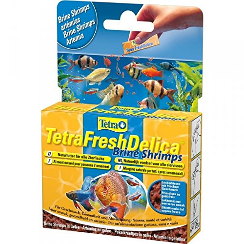 Tetra Delica Fresh Brine Shrimps 48g - Fischfutter