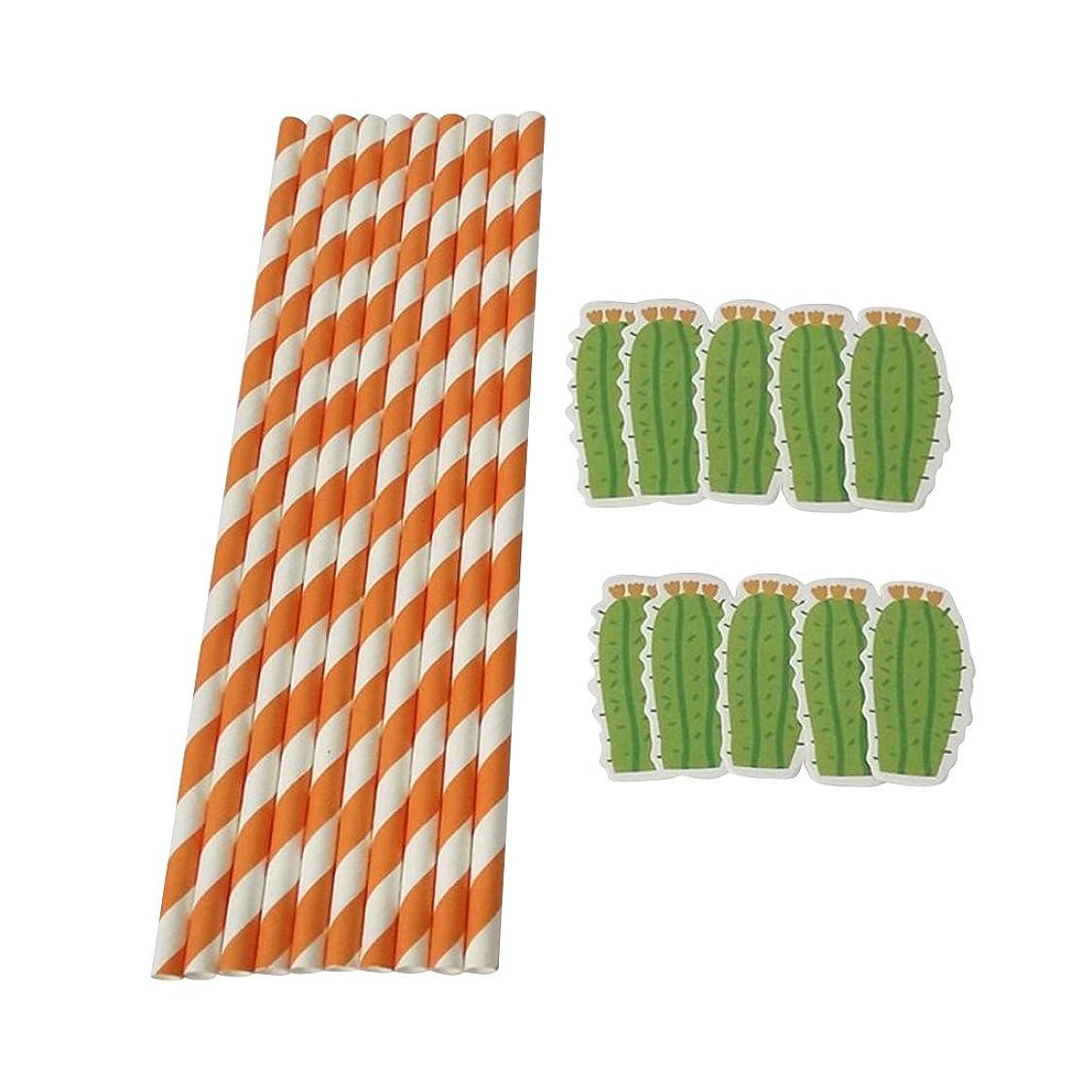 マイクロプロセッサキュービック厚い紙ストライプ サボテンデザイン 使い捨て食器 オレンジ