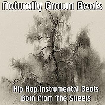 Hip Hop Instrumental Beats Born From The Streets