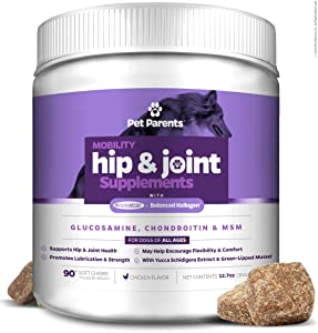Pet Parents USA Dog Joint Supplement - Glucosamine for Dogs 4g 90c - Dog Arthritis Supplement - Glucosamine Chondroitin for Dogs + MSM for Dogs & Green Lipped Mussel - Hip & Joint Supplement for Dogs