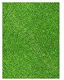 Gras rasen Bedruckt Zucker zuckerguss blatt (ca. 7.5' x 5) für kuchen dekoration - Schneiden essbar formen von der zucker Zuckerguss Blatt mit basteln messer oder scheere zum aufstecken on...