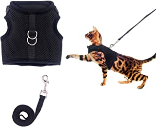 Best kitten leash and harness Reviews