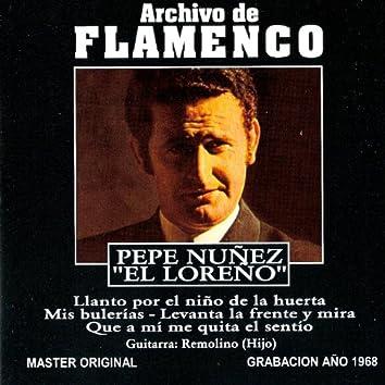 Archivo de Flamenco, Vol. 19