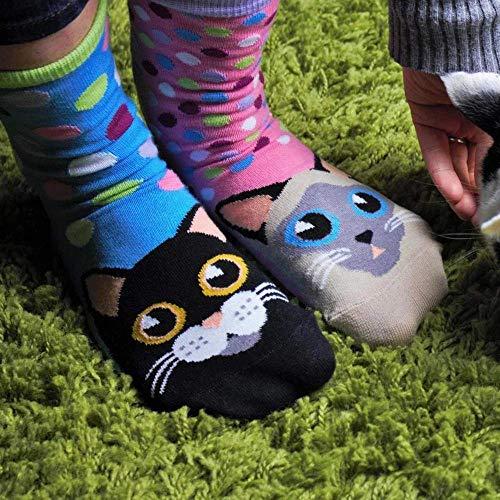 Caja Regalo 6 pares calcetines de Gatito