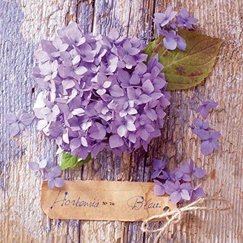 Linoows G5535 : 20 Serviettes Hydrangea Fleur Bleu Romantique Maison de Campagne Motif 33x33 Cm