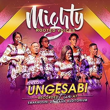 Ungesabi (Live)