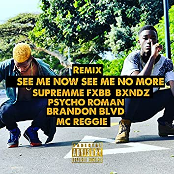 See Me Now See Me No More (feat. Psycho Roman, Brandon Blvd, Mc Reggie, Bxndz) [Remix]