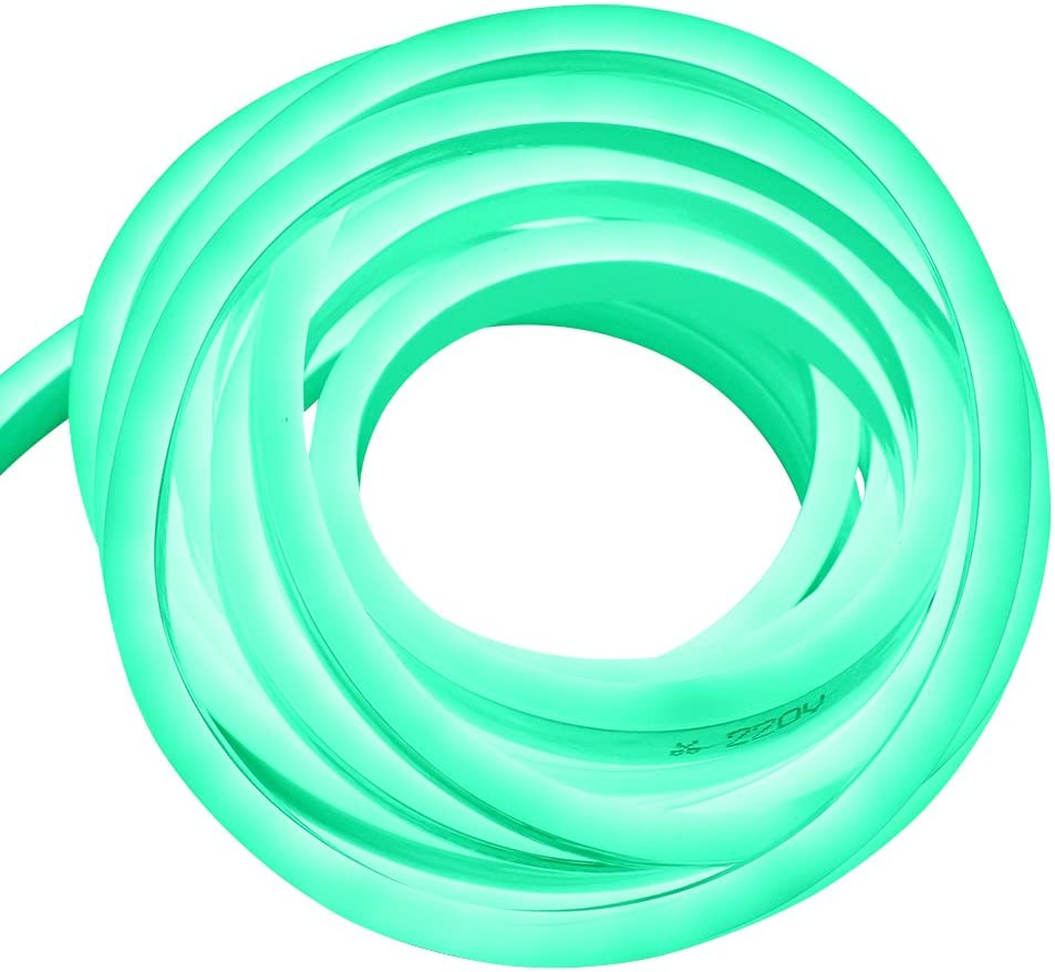 XUNATA 9.9ft LED Recommendation Rope Neon Max 59% OFF Light 110V Waterproof Pl US Flexible