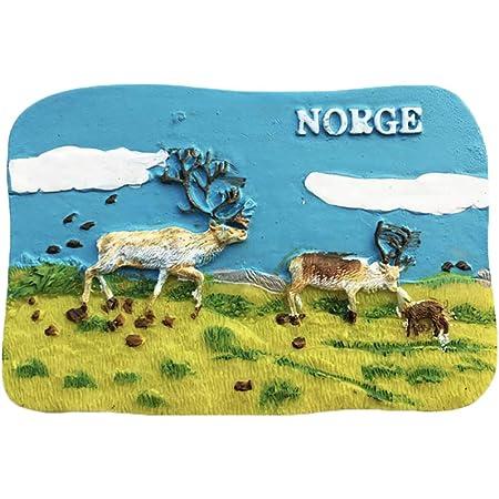 Ragazzo Norvegia 3D Frigorifero Frigorifero Magnete Viaggio Citt/à Souvenir Collezione Cucina Bordo Bordo Bianco Adesivo Resina