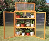 Gardens Imperial® Gatcombe 3-tier Wooden Mini Greenhouse with Polycarbonate Panels 82cm (W) x 34cm (D) x 107cm (H)