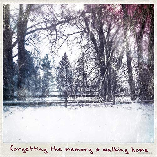Forgetting the Memory