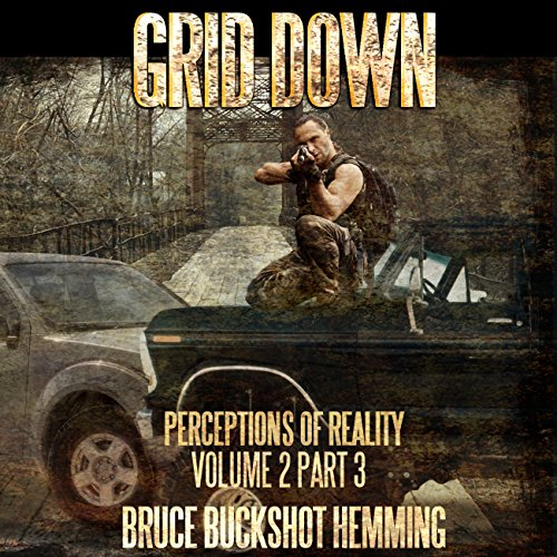 Grid Down: Perceptions of Reality audiobook cover art