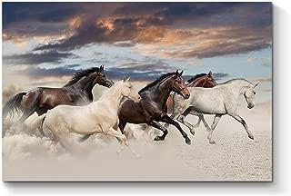 Best wild horse art Reviews