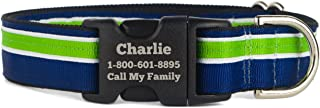If It Barks Personalized Striped Dog Collar - Engraved Name - Custom Size