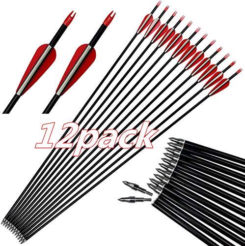 DZGN Bogenschießen 30inch Carbon-Pfeil Praxis Jagdpfeile mit 3inch Blatt Feldpunkt und 100 Grain Removable Tipps für die Verbindung und Recurve-Bogen (12 Stück)