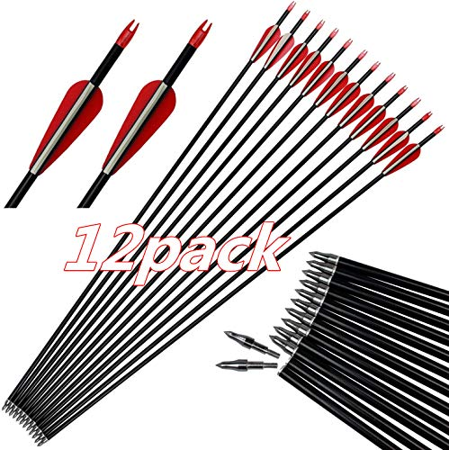 DZGN Tiro con Arco de Carbono de 30 Pulgadas de Flecha de práctica de Caza con Flechas de 3 Pulgadas de la Hoja Campo de Punto y 100 Grano Consejos extraíble para el Compuesto (Paquete de 12)
