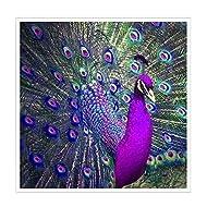 Jatidne 5d Diamond Painting Kits Full Drill 30cm x 30cm Diy Peacock Diamond Art Embroidery for Home ...
