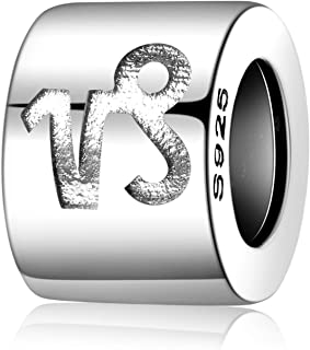 JewelryPalace 925 Sterling Silver Engraving Constellation Zodiac Sign Bead Charm fit Bracelet